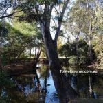 Bendigo Botanic Gardens 2