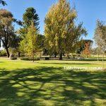 Bendigo Botanic Gardens 3