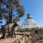Four Harmoneous friends at Stupa