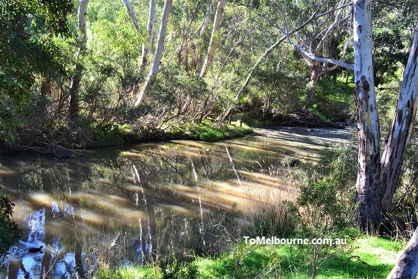 Jacksons Creek